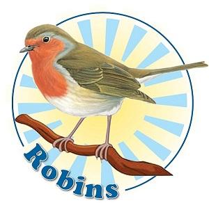 A3 Robins Logo