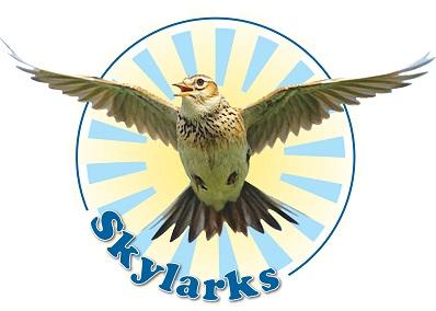 A3 Skylarks Logo